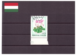 Hongrie 1973 - Oblitéré - Fleurs - Michel Nr. 2888 (hun218) - Hungary