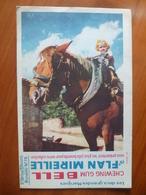 Buvard  Chewing-gum  BELL Et Flan Mireille  N° 78 - Buvards, Protège-cahiers Illustrés