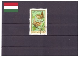 Hongrie 1973 - Oblitéré - Oiseaux - Michel Nr. 2855A (hun222) - Hungary
