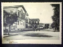 TOSCANA -MASSA CARRARA -F.G. LOTTO N°19 - Massa