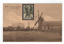 Hechtel  De Oude Windmolen.  Le Vieux Moulin - Hechtel-Eksel