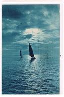 Cartolina - Postcard / Viaggiata - Sent / Marina Di Pisa – Targhetta Commerciale - Pisa