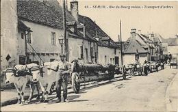 SEMUR EN AUXOIS Rue Du Bourg Voisin.Transport D' Arbres.Attelage De Boeufs - Autres Communes