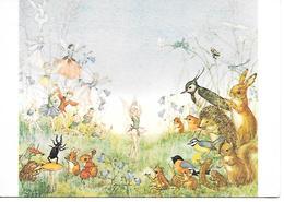 Illustrator - Molly Brett - Fee, Fée, Pixie,fairy, Frog, Grenouille,Frosch, Vanneau, Lapwing,snail, Escargot, Animals - Andere Illustrators
