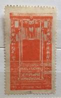 DOMODOSSOLA  OTTOBRE 1905  FESTEGGIAMENTI INAUGURAZIONE DEL SEMPIONE  ERINNOFILO CHIUDILETTERA - Stamps