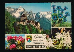 Liechtenstein [AA32-1.561 - Liechtenstein