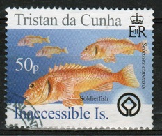 Tristan Da Cunha 2005 Single Stamp From The  Islands 3rd Series (Inaccessible). - Tristan Da Cunha