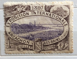 ARCACHON LES BAINS 1897 EXPOSITION INTERNATIONALE .....ERINNOFILO CHIUDILETTERA ETICHETTA PUBBLICITARIA D'EPOCA - Francobolli