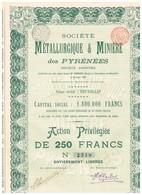 Action Ancienne - Société Métallurgique Et Minière Des Pyrénées - Titre De 1900 - - Mines