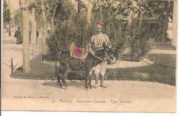 L200A150 -  Marseille - Exposition Coloniale De 1906 - Type Tunisien - Petit âne  - Lacour N°47 - Colonial Exhibitions 1906 - 1922