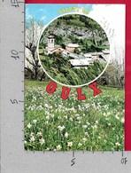 CARTOLINA VG ITALIA - Saluti Da OULX (TO) - Panorama - 10 X 15 - ANN. 1971 - Saluti Da.../ Gruss Aus...