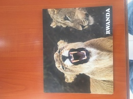 Rwanda Akagera Park Lions Postcard - Rwanda