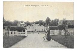 Château De Moulignon - Entrée De L'Avenue - Saint Fargeau Ponthierry