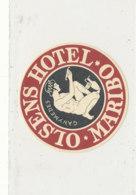 E H 668 - ETIQUETTE   HOTEL -  OLSENS HOTEL  MARIBO - Etiquettes D'hotels