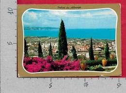 CARTOLINA VG ITALIA - Saluti Da ALBENGA (SV) - Panorama - 10 X 15 - ANN. 1973 - Saluti Da.../ Gruss Aus...