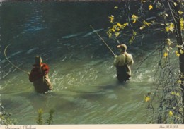 Fishing Michigan Rivers And Sterams The Fisherman's Challenge - Fishing