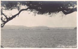 R183321 The Fleet At Argostoli. 1929 - Cartes Postales