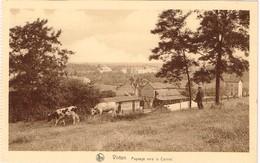 CPA - Virton - Paysage Vers Le Carmel - Nels - Virton
