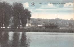 VISE - Panorama De La Meuse - Wezet