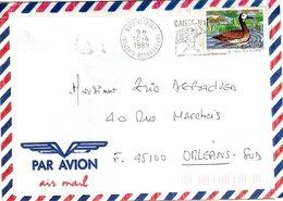 BURKINA  FASO,   Letter,  Bird   /    Lettre,  Oiseau   1989 - Entenvögel