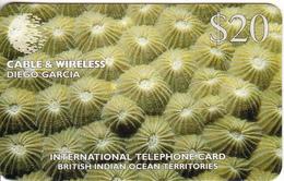 DIEGO GARCIA - Underwater/Diploastera Heliopora, C&W Prepaid Card $20, CN : DG33, Tirage 8000, Mint - Diego-Garcia