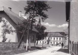 SENTJERNEJ,SLOVENIA POSTCARD - Slovénie