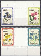 PABAY Local Mail To SKYE - 1963 - Europa - Serie Completa Di 4 Valori MNH Con Margini Di Foglio, Come Da Immagine. - Local Issues