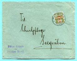 Brief Von Wetzikon Nach Seegräben 1922 - Absender: Ferien-Kolonie Des Bezirks Hinwil - Franchise