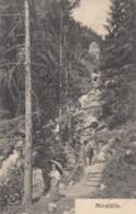 AK- NÖ - Wanderer Auf Den Mirafällen - 1908 - Wiener Neustadt