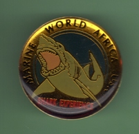 REQUIN *** USA MARINE WORLD AFRICA SHARK EXPERIENCE *** 27-03 - Dieren
