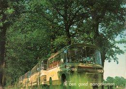 < Auto Voiture Car >> Autobus Coach Bus, OM Kinderoord De Schaarshoek Heino Holland - Buses & Coaches