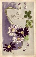 SOUVENIR D AMITIÉ  (carte Brodée En Relief) - Felicitaciones (Fiestas)