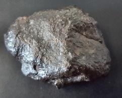 - MÉTÉORITE - NORTH WEST AFRICA - 25.35 G - Meteorites