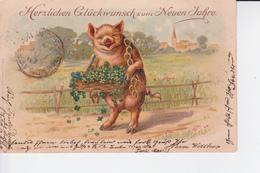 CP De 1901 : Cochon Porte-bonheur Avec Une Corbeille Remplie De Trèles à 4 Feuilles Et Fer à Cheval Autour Du Cou - Varkens