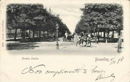 BRUXELLES - Avenue Louise - Oblitération De 1898 - Stengel & Co., Dresde.   4098 - Lanen, Boulevards