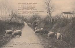 U20-47) Villeneuve Sur Lot - La Côte Du Bourreau De Pujol à Villeneuve - La Pastouro (Poême De Paul Froument - Moutons) - Villeneuve Sur Lot