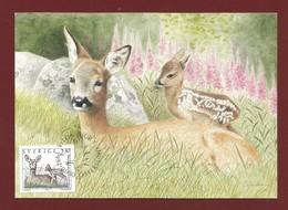 "Schweden / Sverige   Mi.Nr. 1700 , The Stamp "" Roe Deer And Kid "" - Maximum Card Nr. 64 - 1992.01.30 - Cartes-maximum (CM)"