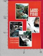 CARTOLINA VG NORVEGIA - LAKSE FISKE - Salmon Fishing - Vedutine Multivue - 10 X 15 - ANN. 1977 - Norvegia