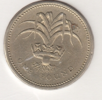 @Y@   Groot Brittanië   1 Pound / Pond 1985  (4795) - 1 Pound