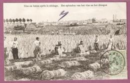 Belgique Joli Lot De 50 Cpa Toutes Scannées Recto Verso - Cartes Postales
