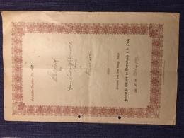 Bayerischer Steigbrief Aus Der Pfalz 1899. - Diplome Und Schulzeugnisse