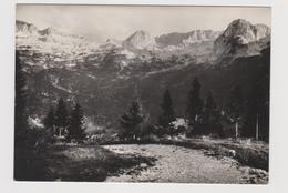 CATENA Del  CANIN  (UD)    - F.G.  - Anni  '1950 - Udine