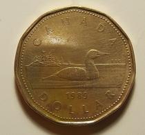Canada 1 Dollar 1989 Varnished - Canada