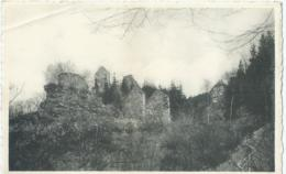 Les Ruines De Reinhardstein-lez-Robertville - Hotel Du Lac - Foto Fagnoul - Weismes