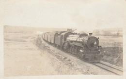 ALBERTA - Le Canadian Pacific Railway En 1921   ( Carte-photo ) - Alberta