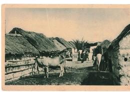 AFRICA ORIENTALE - STRADA IN QUARTIERE INDIGENO - Etiopia