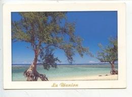 Ile De La Réunion : L'hermitage - Autres