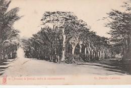 -CPA - Avenue De Bourail, Centre De Concessionnaires En Nouvelle-Calédonie - 016 - Nouvelle Calédonie