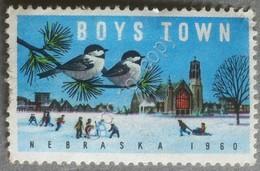 Erinnofilia Cinderella Stari Uniti 1960 - Boys Town Nebraska - Inverno - Winter - Francobolli