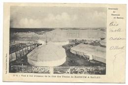 Cirque BARNUM & BAILEY - Vue à Vol D'oiseau De La Cité Des Tentes...1902  Animé - Circus